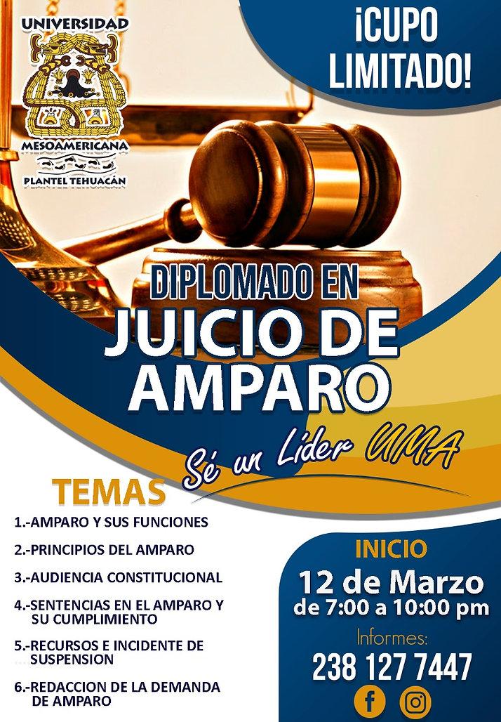 Diplomado en Juicio de Amparo (1).jpeg