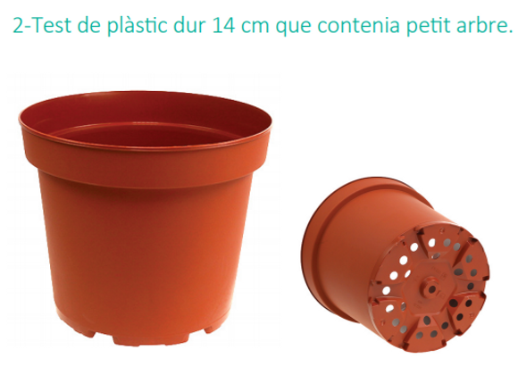 Testos de plàstic
