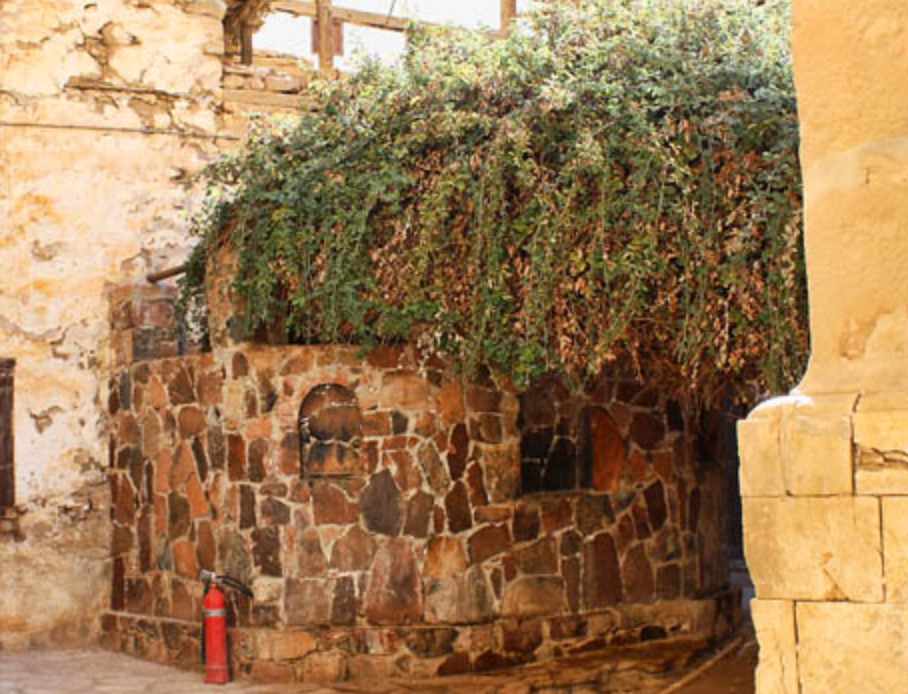 """Burning Bush"" at St. Catherine's Monastery, Sinai"
