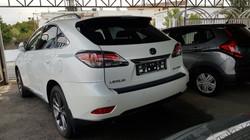 Lexus RX450h White Pearl 03