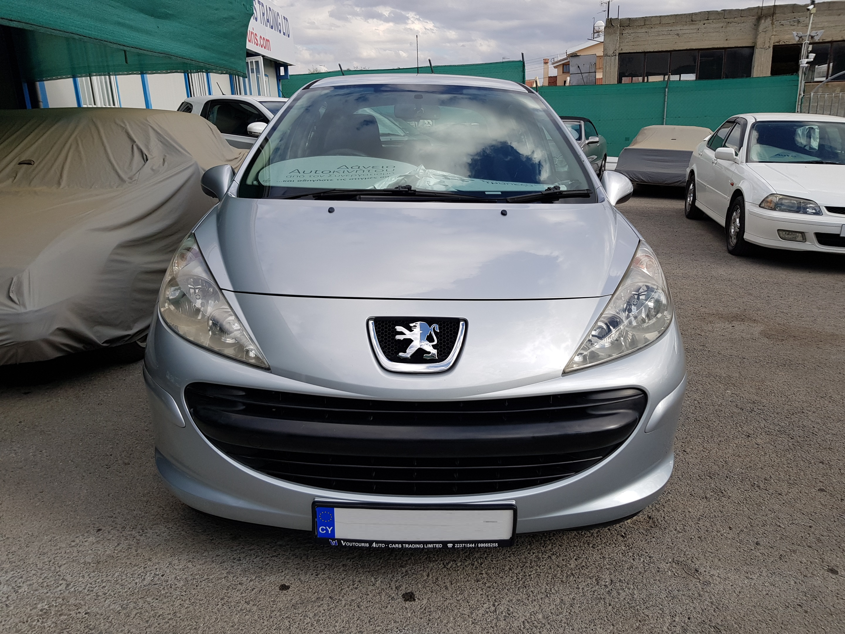 Peugeot 207 Silver 04