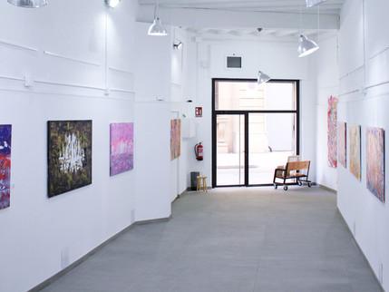 VeraD Exhibition