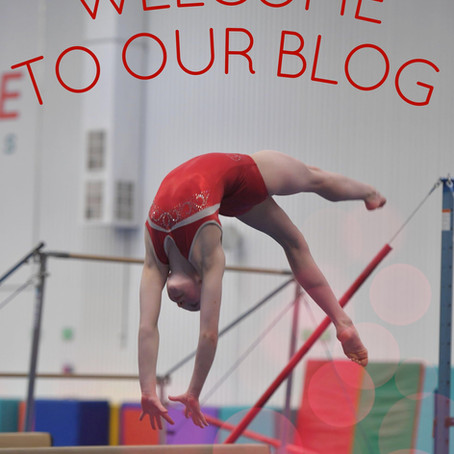 Look! We've Made a Blog!