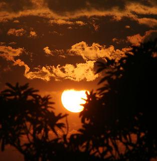 saptarshi-ghosh-513585-unsplash.jpg