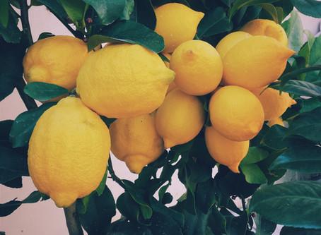 Un camion di Limoni