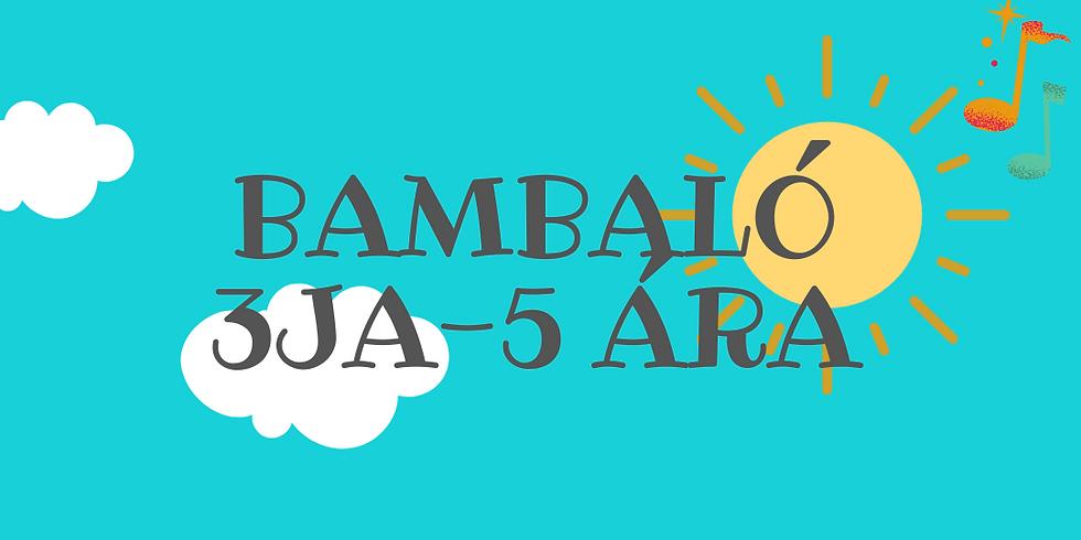Bambaló 3ja-5 ára 7. nóv kl. 11:30