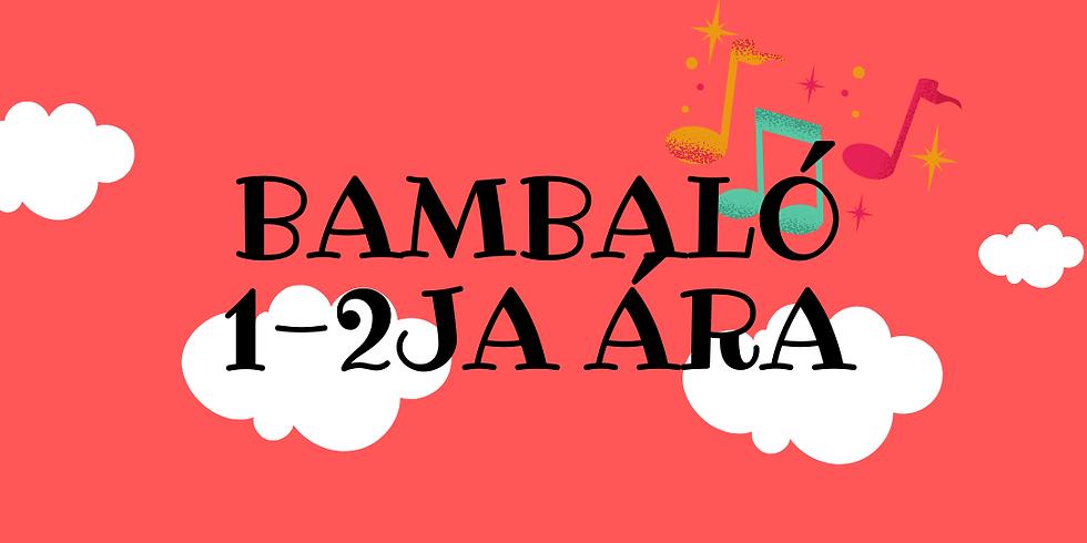 Bambaló 1-2ja ára fim 21. okt kl. 10:30  (Kennari: Sigrún)
