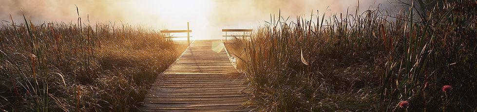 up the beach path.jpg