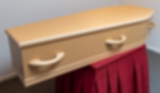 casket shone and shirley 1 (1).png