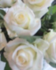 white-roses-3r.jpg