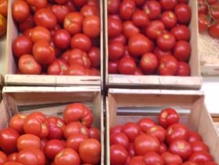 Tomates Roma à coulis en circuit court