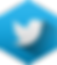 IIG Services Twitter