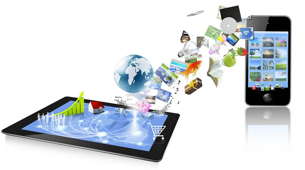 SERVICE MANAGEMENT SOFTWARE (MOBILITY)