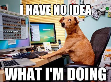 6 KEYS TO IMPLEMENTING THE IDEAL ERP SOLUTION (As Presented In Dog Memes)