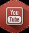 IIG Services Youtube