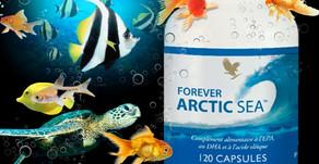 Voilà pourquoi vous devez consommer Artic Sea Forever!