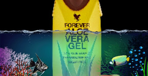 What is Forever Living's flagship product ?