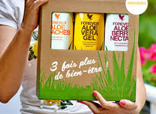Aloe vera: the benefits that this plant can bring to the health of the human body