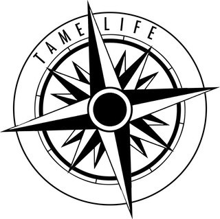 tame life limited antigravity fitness ma