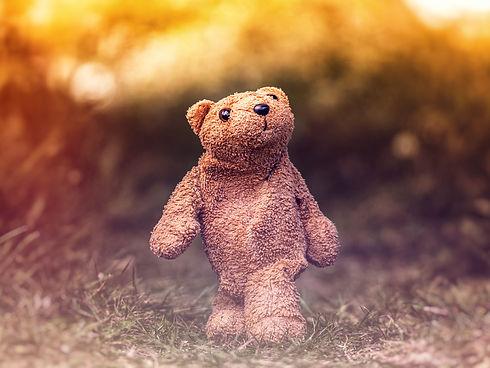 Ted Walk