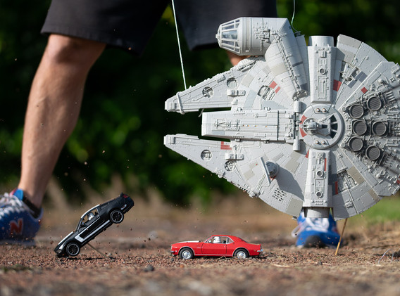 Falcon Chase 2