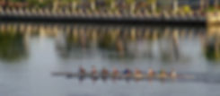 Lowcountry Rowing Club EIGHT man.jpg