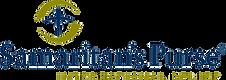 logo-1529076007_edited.png