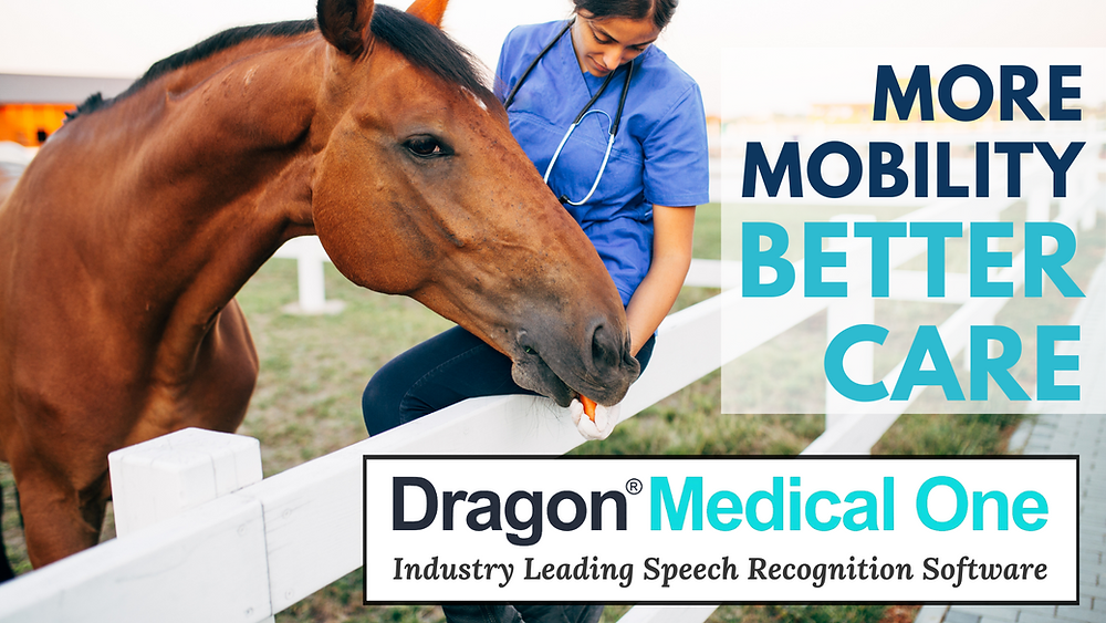Equine Veterinarians Benefit from the FREEDOM of using Dragon Medical One Speech Recognition