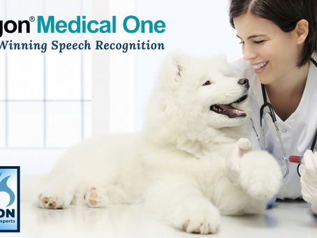 NAVC Members Yield a Higher Level of Veterinary Practice Performance When Using Dragon® Medical One