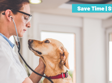 Veterinarians Using Speech Recognition Save Hours Each Day When Documenting Patient Visits