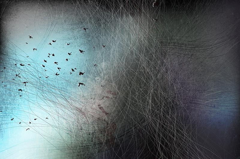 oscillation metallique©berri