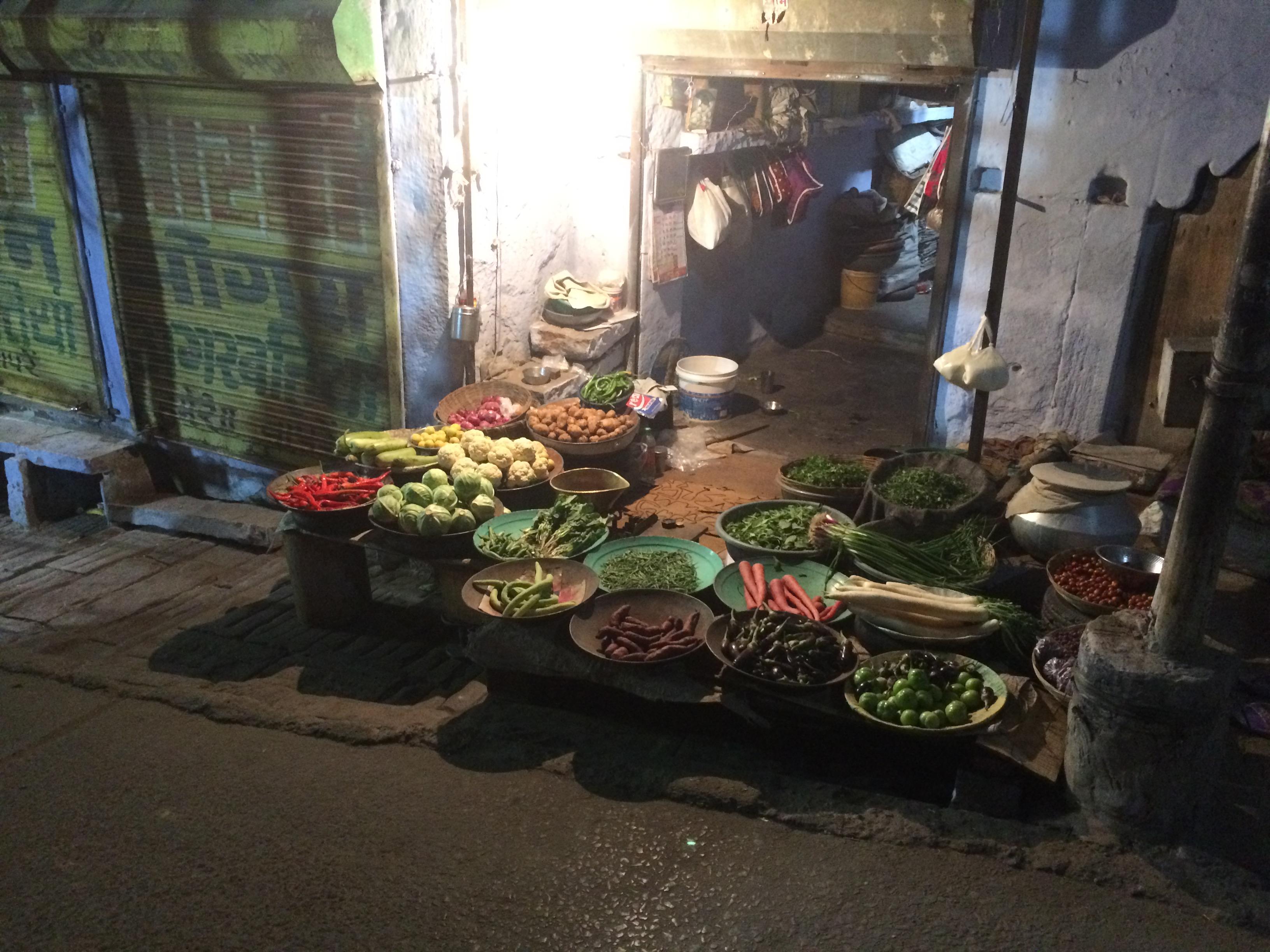 jodhpur dec15 022