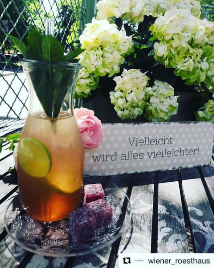 sicher wird es vielleichter mit unserer neuen Sorte Homemade Lemonade Pink Grapefruit/Sauerkirsch/Basilikum