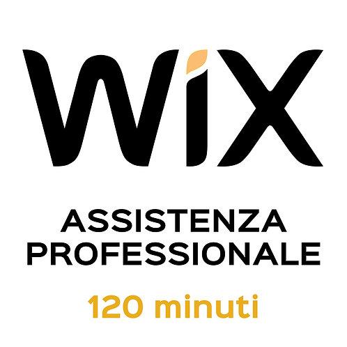 Assistenza Professionale WiX 120 Minuti