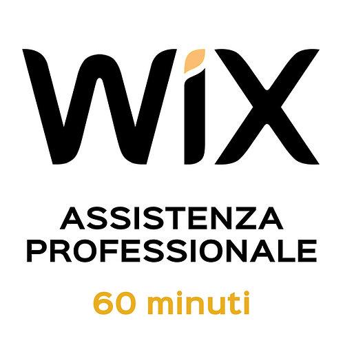 Assistenza Professionale WiX 60 Minuti
