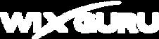 logo_wixguru.png