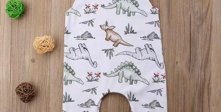 Boys Dinosaur Romper