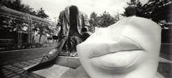 Pinhole Photography by Robert Fox