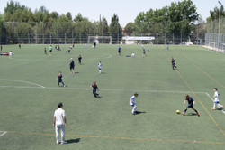Torneos EFRV (6).JPG