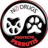 P28 Logo Perrutis.jpg