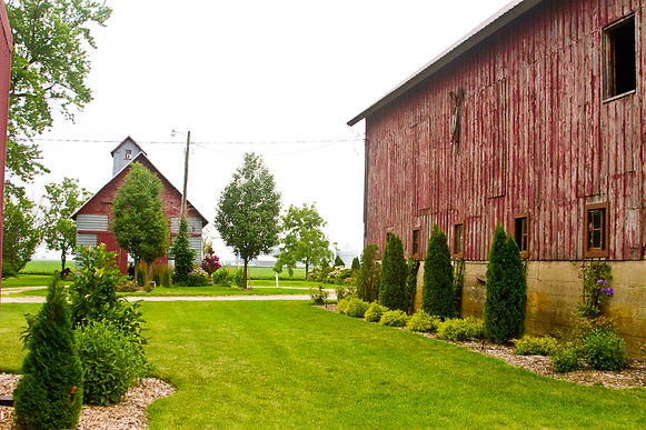 Mora Farm-117.jpg