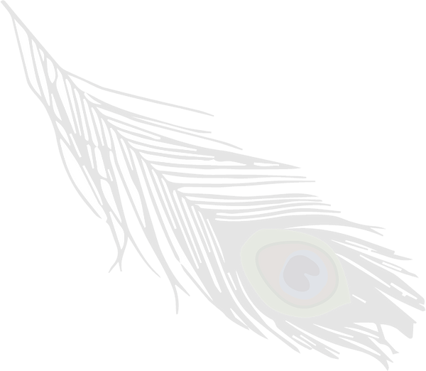 Feather Only 10 Percent Transparency.png