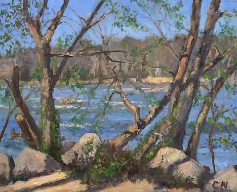 River Series No. 12