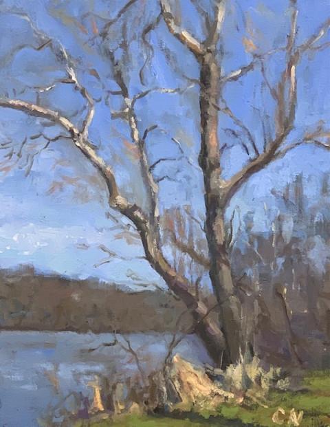 River Series No. 9