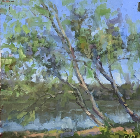 River Series No. 16