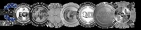 Medali_ICM.png