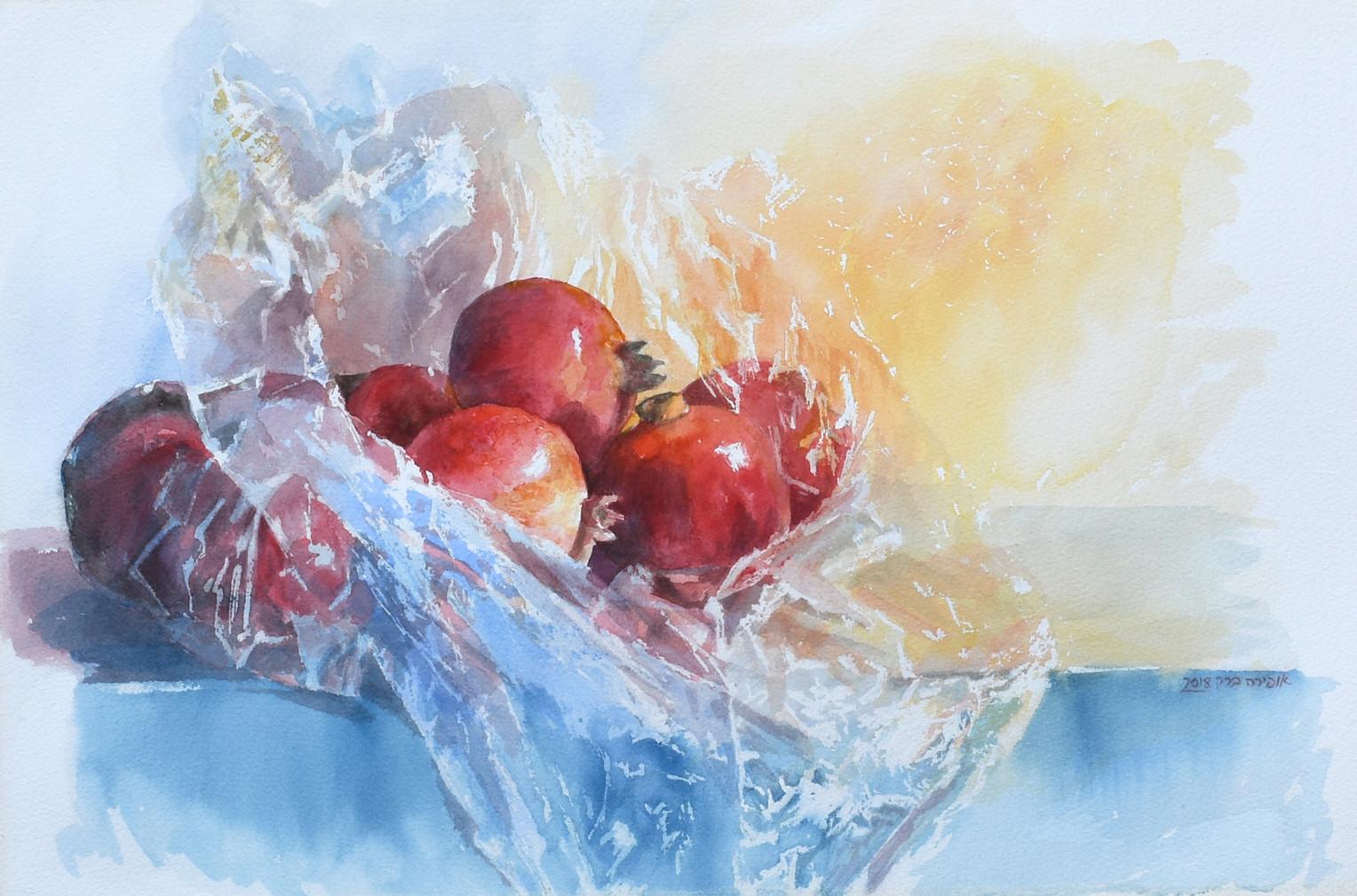 Pomegrantes-Watercolor-53X35cm-2018