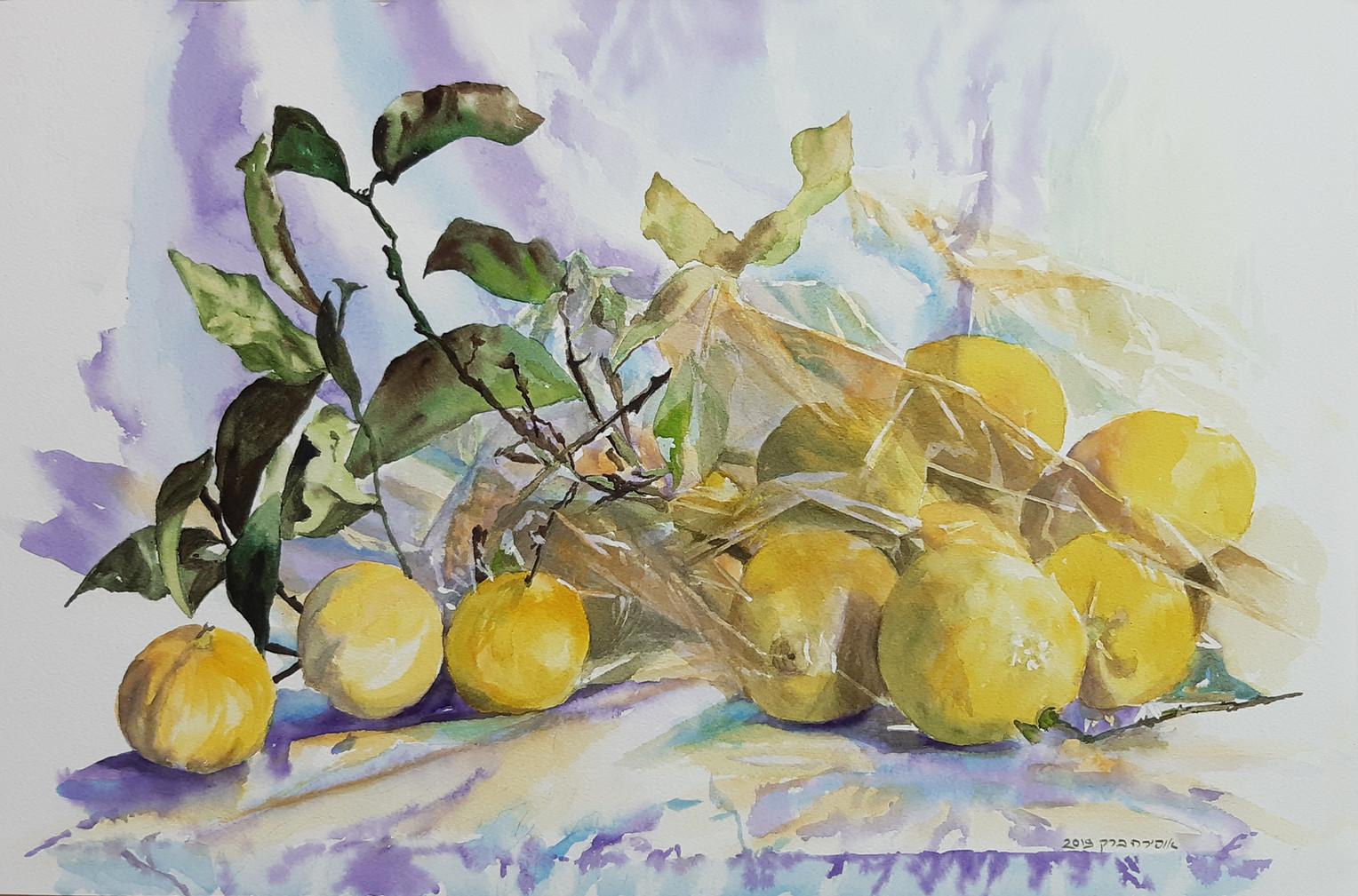 Lemons-Watercolor-55X35cm-2019