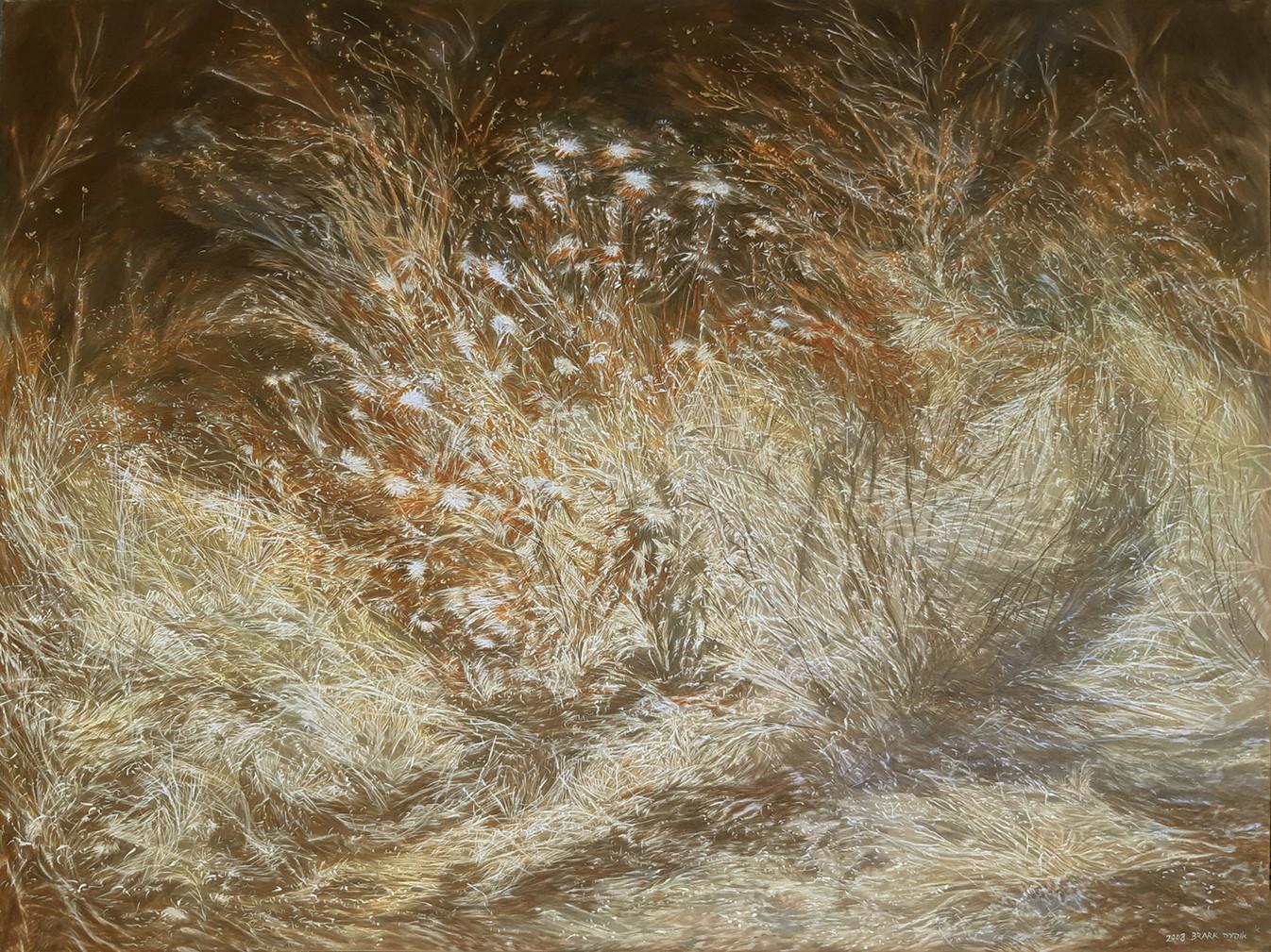 Weeds-Acrylic-120X90cm-2008
