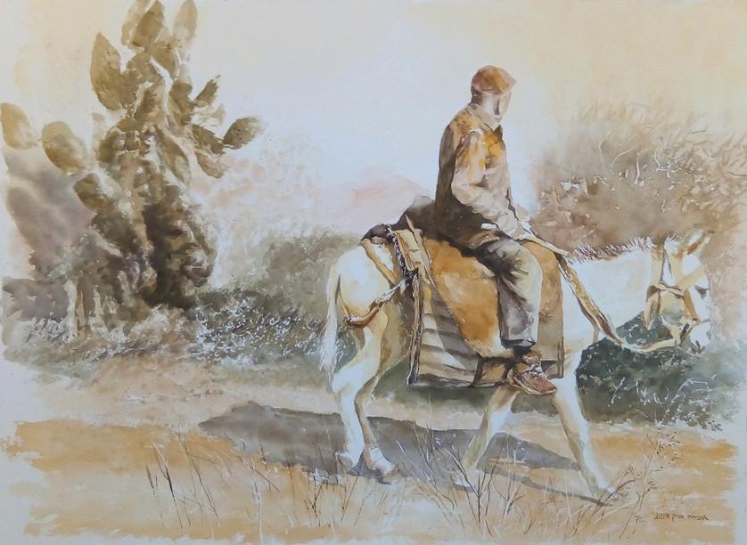 White donkey-Watercolor-73X53-2019